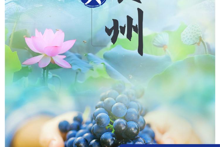 经典贺州-贺州姑婆山、黄姚古镇高铁三天