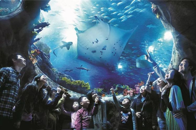 【买一送一】香港海洋公园门票