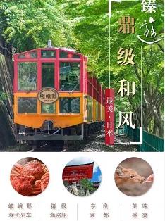 【高品質日雙飛6日】東京、富士山、京都、大阪一次游覽、盡覽本州精華