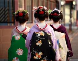 【春節日本輕松半自助】——青島出發去日本鐮倉三古都雙樂園7日游