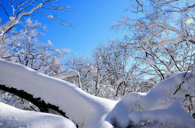 美丽冰城哈尔滨、亚布力滑雪、虎峰岭、中国雪乡、雪地温泉双飞5日游