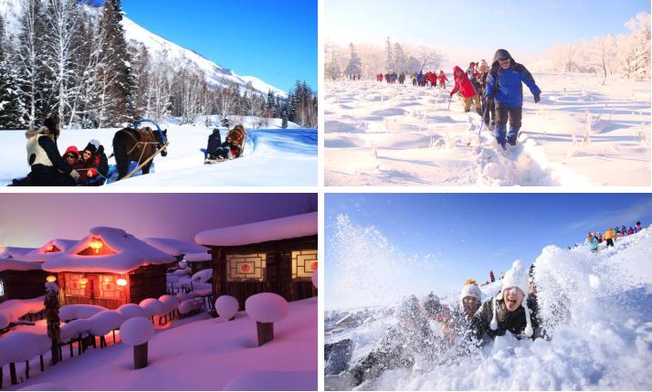 【黑金系列】-【高端雪乡】冰城哈尔滨、亚布力滑雪场、童话世界雪乡、冰雪画廊、冰雪幻境十里画廊、夜游梦幻家园(观赏雪蘑菇处)、雪龙顶、林海雪原穿越双飞5天